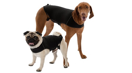 Dog Clothing For Anxiety