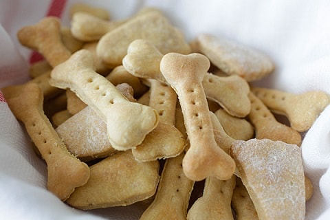 Nutritional Dog Biscuits